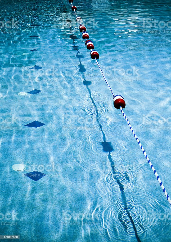 swimming line markers stock photo