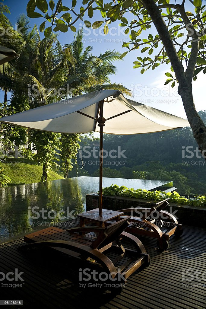 swimming pool in the jungle royalty-free stock photo