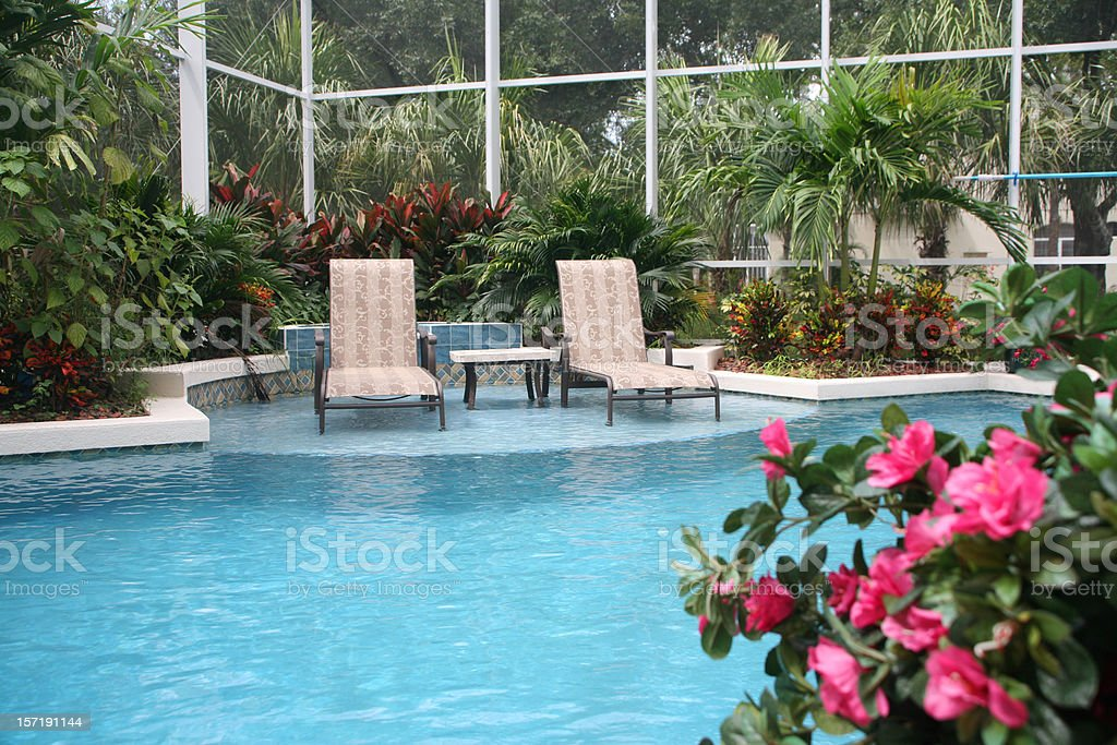 Swimming Pool in the Tropics royalty-free stock photo