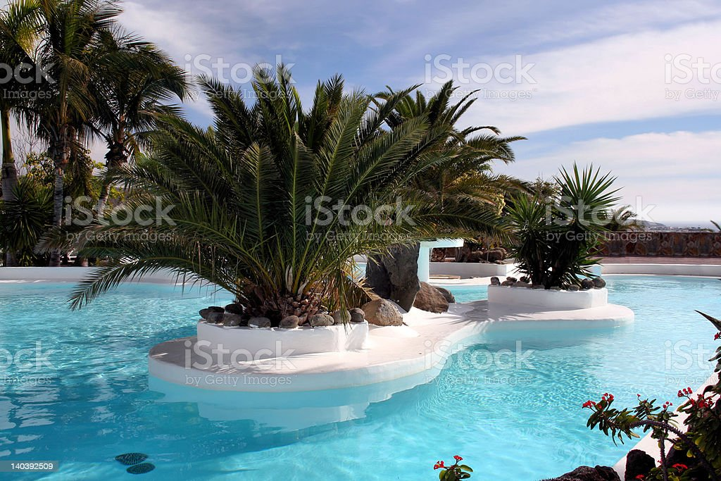 'Swimming pool', Palm grove royalty-free stock photo