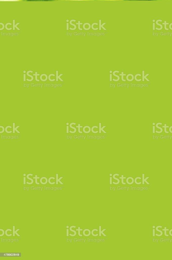 Swimwear (unretouched) stock photo