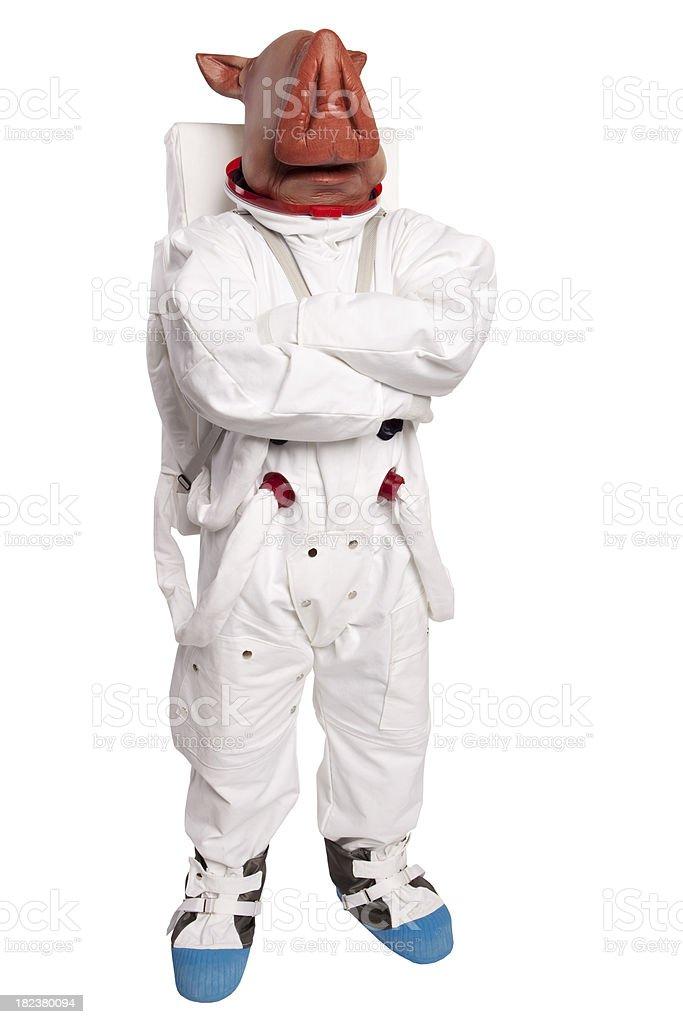 Swine Flu Astronaut stock photo