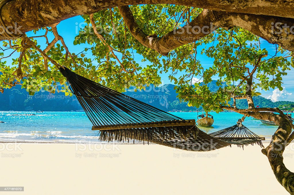 Swing hang from coconut tree over beach, Thailand stock photo