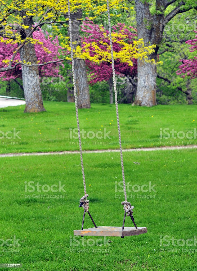 Swing in Spring with flowering trees stock photo