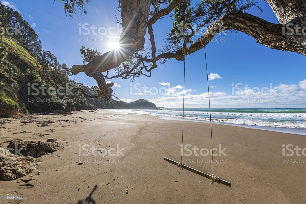 Swing on the beach in Northland, New Zealand stock photo