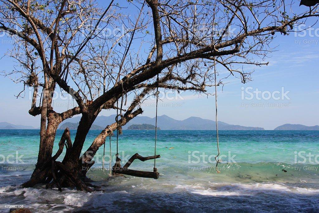 Swing em árvore no mar Adaman foto de stock royalty-free