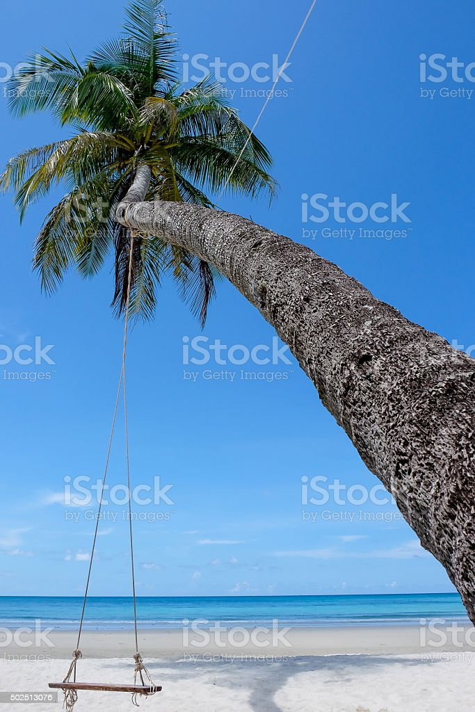 swing under the coconut stock photo
