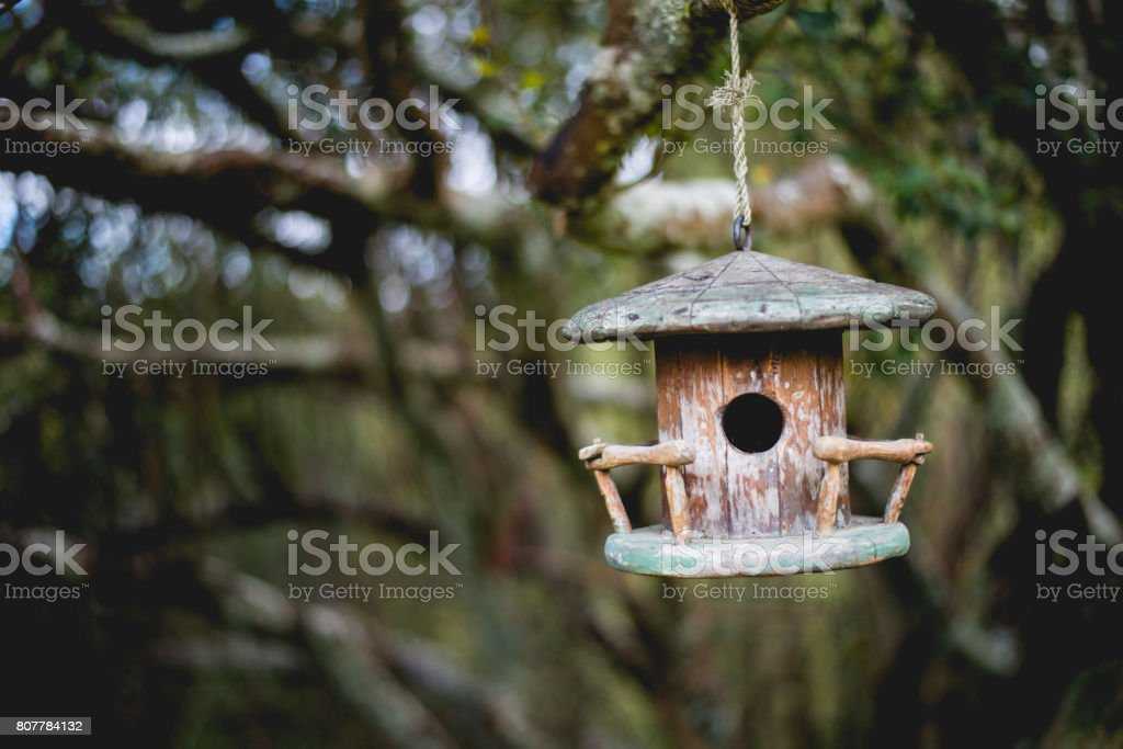 Swinging birdhouse in the woods stock photo