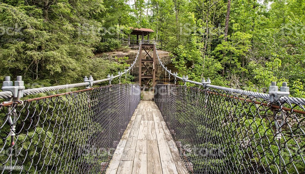 Swinging Footbridge At Pickett State Park In Tennessee stock photo