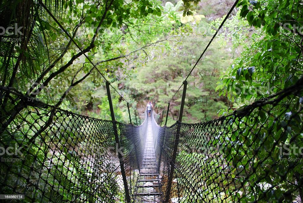 Swinging Rope Bridge, Abel Tasman National Park, NZ royalty-free stock photo