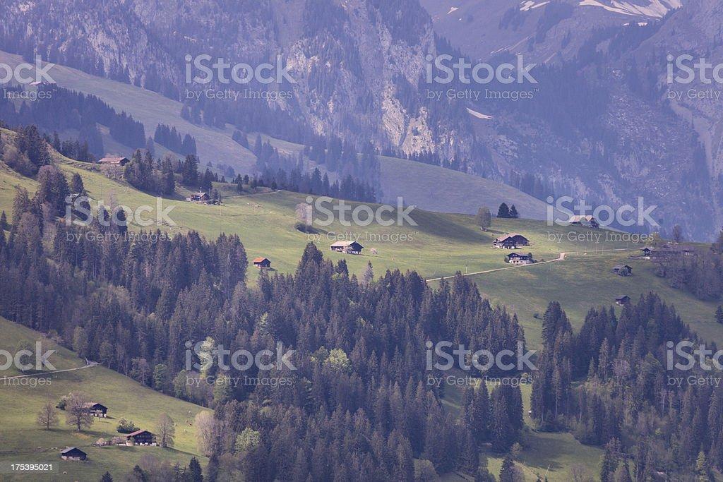 Swiss Alp Hazy Afternoon Spring, Bernese Oberland royalty-free stock photo