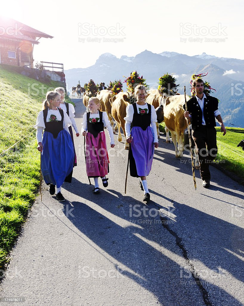 Swiss Alpine farmer family bringing the cattle to town stock photo