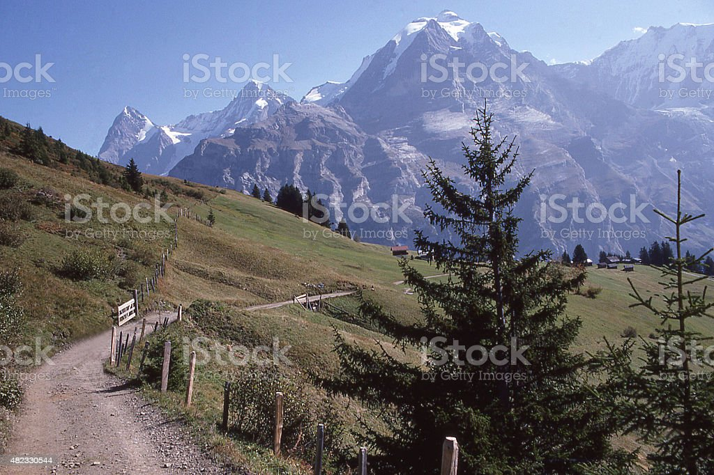 Swiss Alpine meadows Jungfrau Eiger near Schiltalp Switzerland stock photo