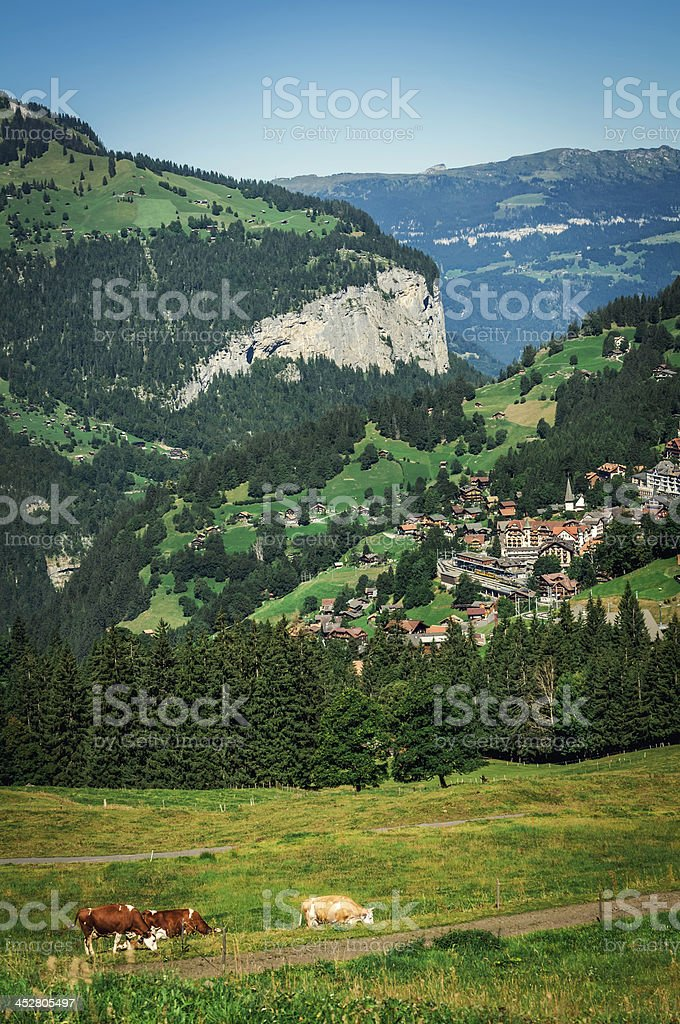 Swiss Alpine Village Wengen (ski center) - V royalty-free stock photo
