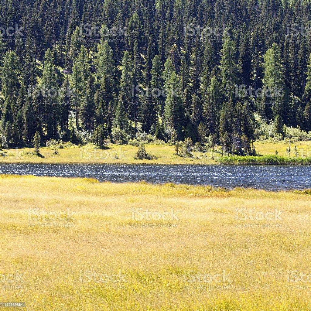 Swiss Alps idyllic lake stock photo