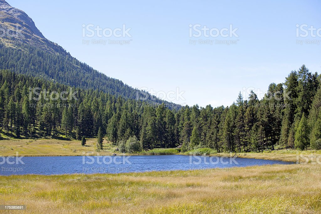 Swiss Alps idyllic lake royalty-free stock photo