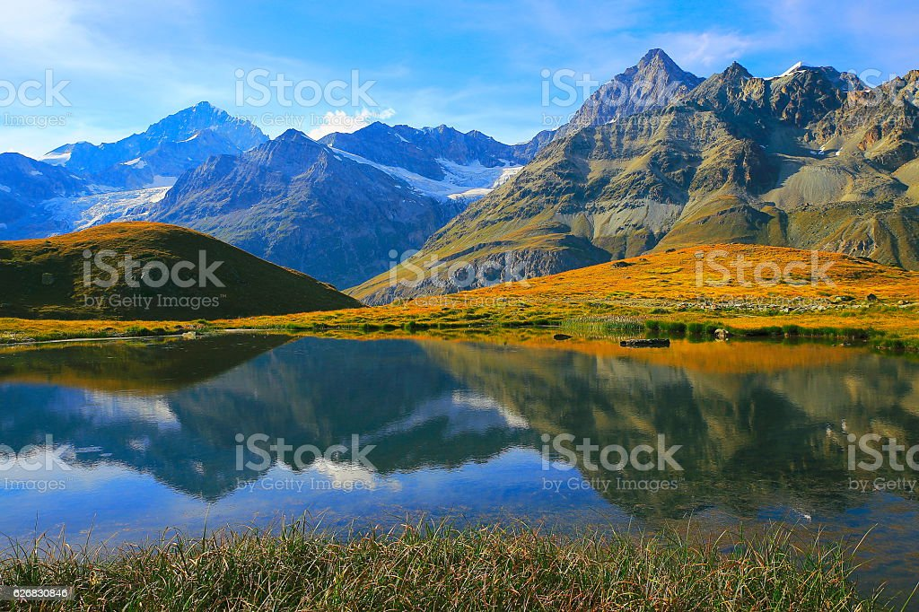 Swiss alps landscape: Alpine Lake reflection,  golden meadows stock photo