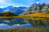 Swiss alps landscape: Alpine Lake reflection,  golden meadows