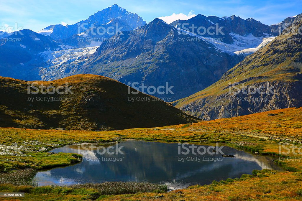 Swiss alps landscape: Mountain Lake reflection, cotton wildflowers, alpine meadows stock photo
