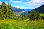 Swiss alps landscape: Wengen village, springtime wildflowers above Lauterbrunnen valley