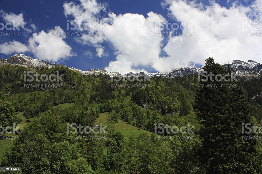 Swiss Alps royalty-free stock photo