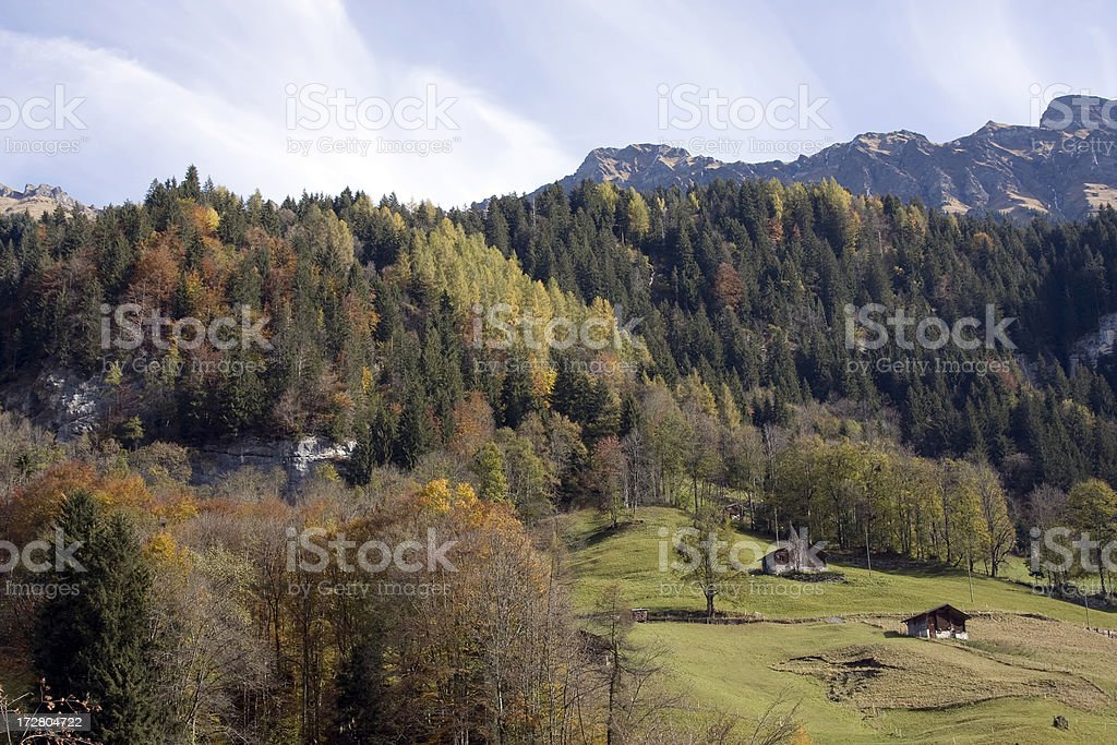 Swiss Alps with typical Chalets royalty-free stock photo