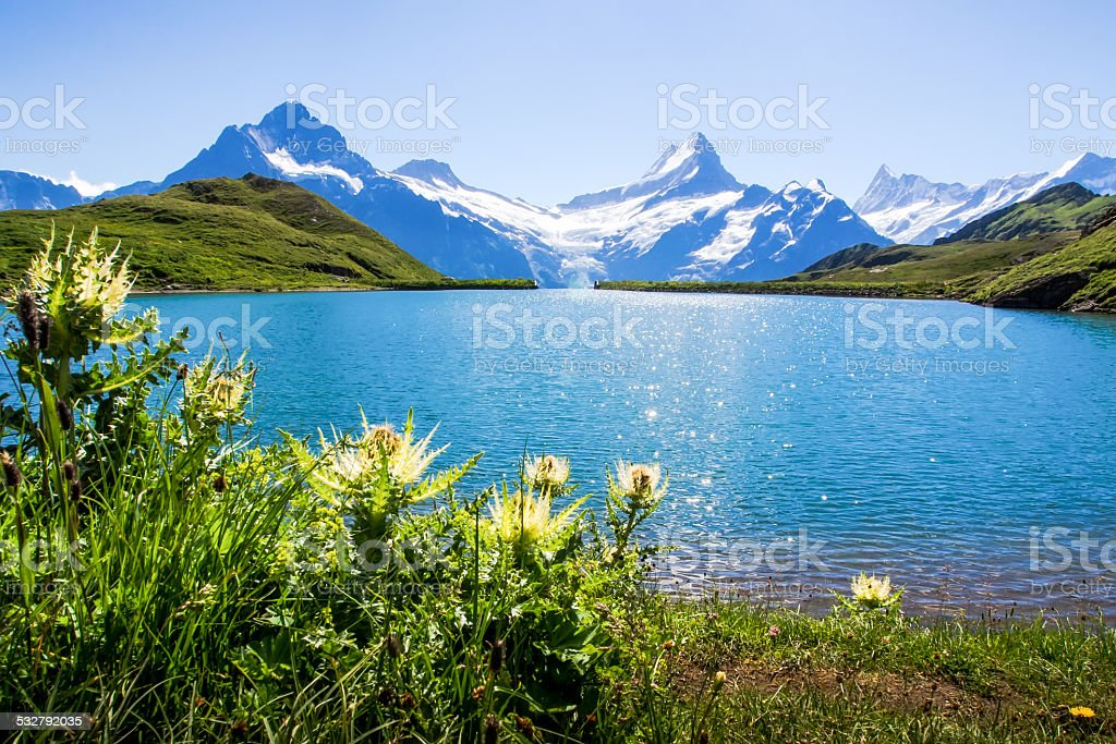 Swiss beauty, Schreckhorn and Wetterhorn, Switzerland. stock photo