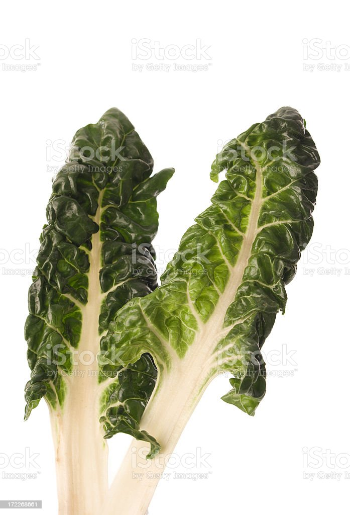 Swiss Chard Vt royalty-free stock photo