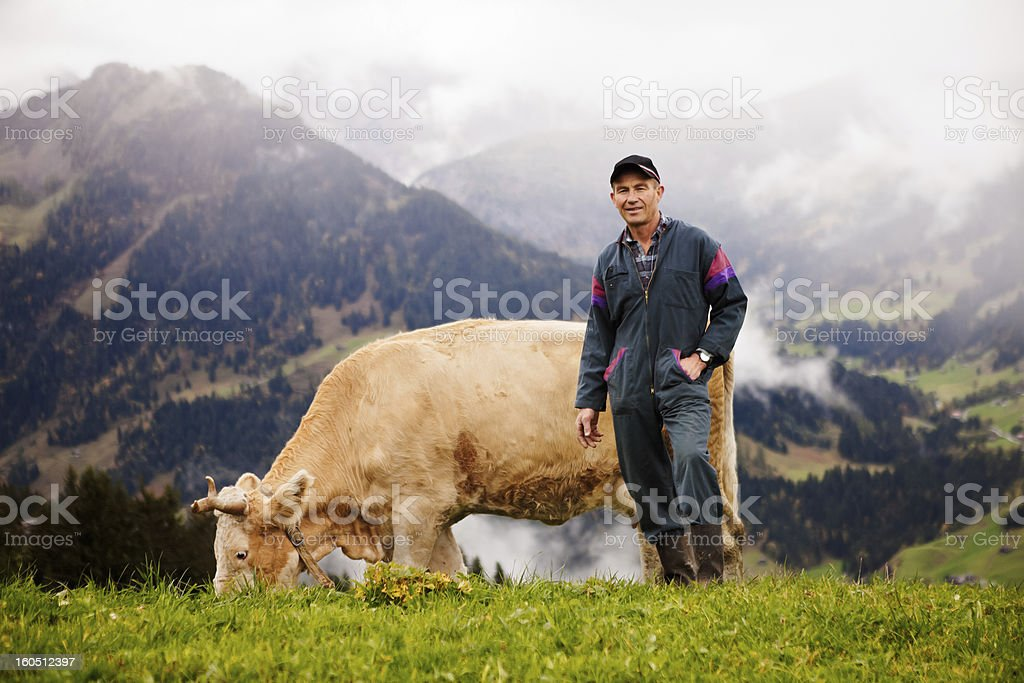 Swiss Dairy Farmer and His Prize Cow stock photo