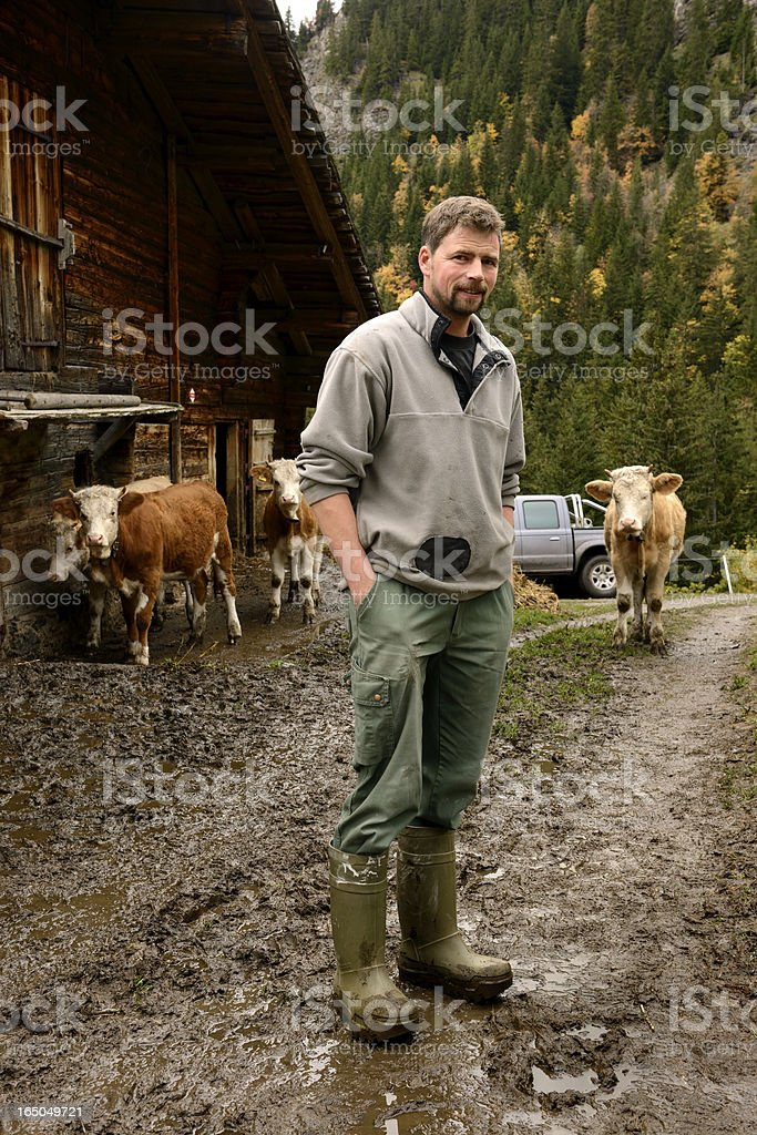 Swiss Farmer Stands on Farm with Cows in Mountains stock photo