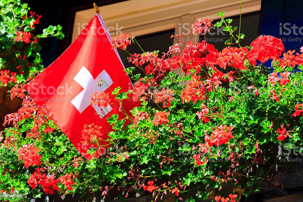 Swiss flag, Colorful Bright flowers garden foliage, Interlaken, Switzerland stock photo