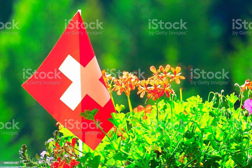 Swiss flag, Colorful Bright flowers garden, Zurich, Switzerland stock photo
