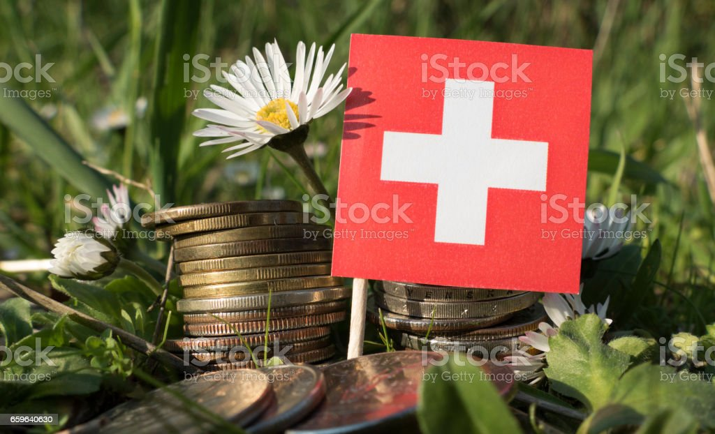 Swiss flag with stack of money coins with grass and flowers stock photo
