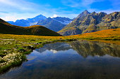 Swiss landscape: Alpine Lake reflection, cotton wildflowers meadows above Zermatt
