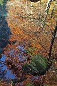 switzerland - autumn in blausee