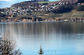 switzerland - lac de morat / lac de murten