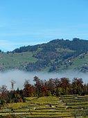 switzerland - oberland bernois, paysage