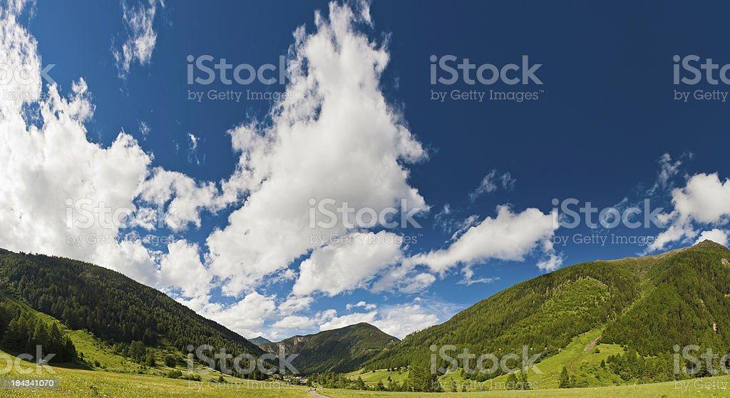 Switzerland summer Alpine wildflower meadow mountains panorama royalty-free stock photo