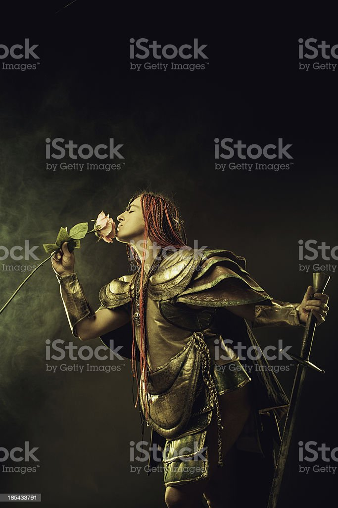 Sword and rose stock photo