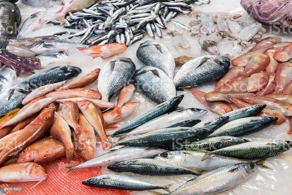 Swordfish and other fish and seafood stock photo