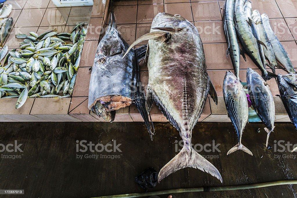 Swordfish on the Market stock photo