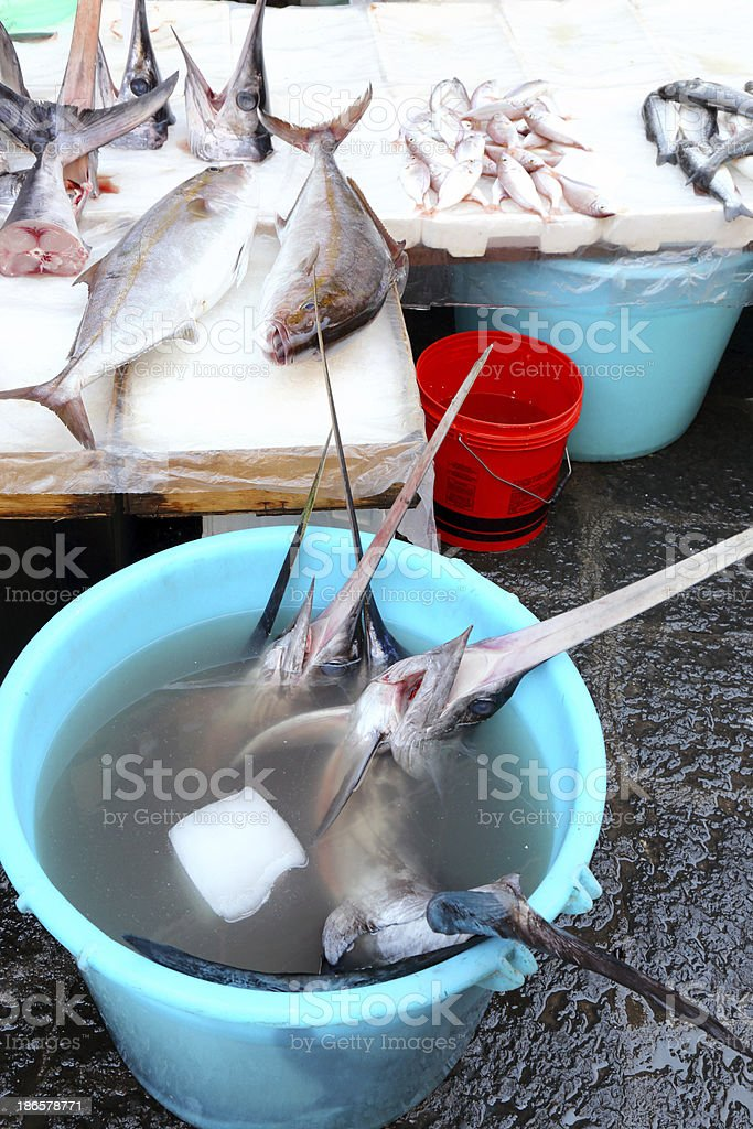 Swordfishes on the market in Catania royalty-free stock photo