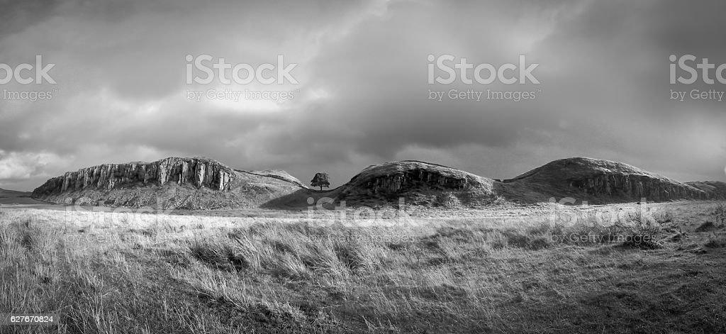 Sycamore Gap - Black and White Panorama stock photo