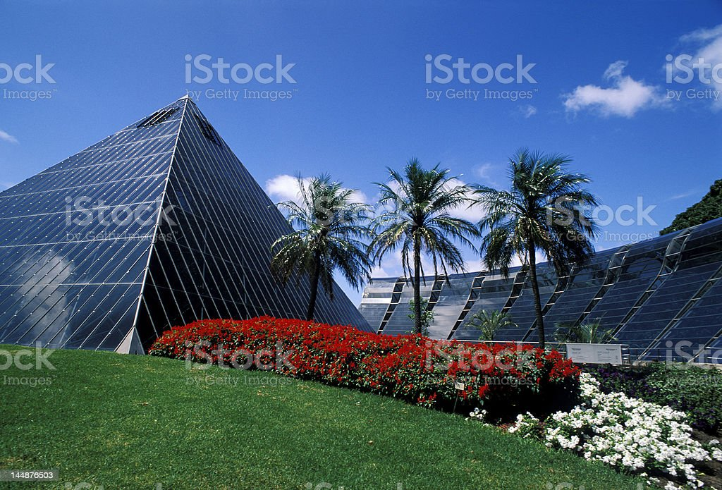 Sydney Botanical Garden royalty-free stock photo