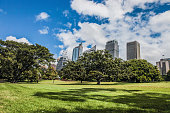 Sydney CBD and Royal Botanic Garden