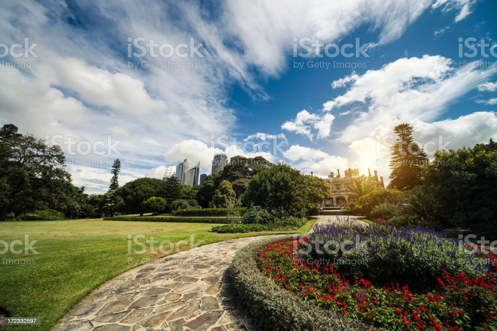 Sydney CBD cityscape seen from the park stock photo