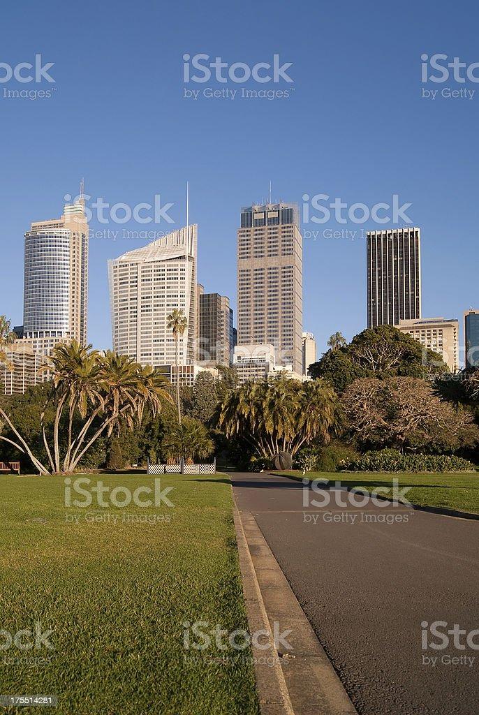 Sydney CBD - Corporate Jungle royalty-free stock photo