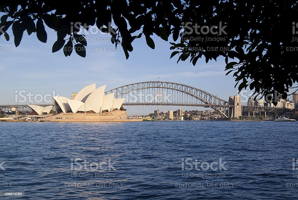 Sydney from Mrs Macquaries Point stock photo