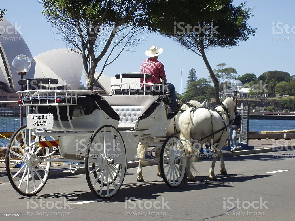 Sydney Horse-Drawn Carriage royalty-free stock photo
