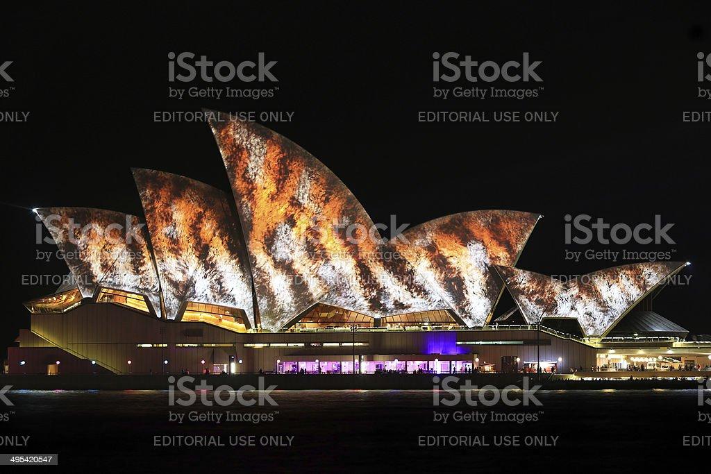 Sydney Opera House Night Vivid Light Festival royalty-free stock photo